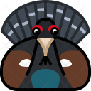 Bird Capercaillie Forrest Icon