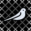 Bird Fly Nature Icon