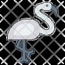 Bird Fly Zoo Icon