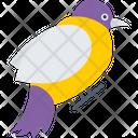 Bird Dove Animal Icon