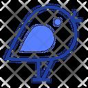 Bird News Little Icon