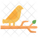 Bird Branch Wings Icon