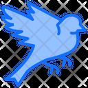 Bird Flying Fly Icon