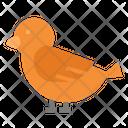 Bird Peace Fly Icon