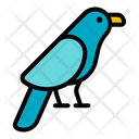 Bird Nature Wildlife Icon