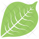 Bird Cherry Leaf Icon