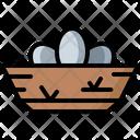 Bird Eggs Egg Bird Icon