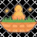 Bird Nest Bird Nest Icon