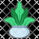 Bird Nest Fern Icon