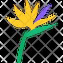 Bird Of Paradise Icon