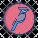 Bird Shooting Icon