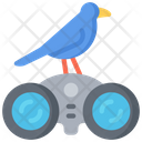 Bird watching Icon