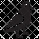 Birds Dove Bird Bird Hunting Icon