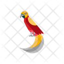 Birds Of Paradise Unique Animal Icon