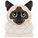 Birman Cat Icon