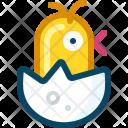 Birth Chick Chicken Icon