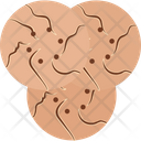 Biscuit Brownie Cookie Icon