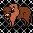 Bison American Bison Bovine Icon