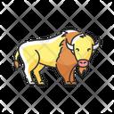 Bison Animal Wildlife Icon