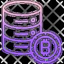 Bitcoin Server Bitcoin Database Bitcoin Data Icon
