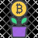 Bitcoin Digital Growth Icon