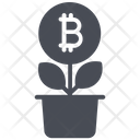 Bitcoin Growth Icon