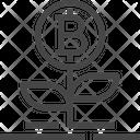 Bitcoin Growth Growth Bitcoin Icon