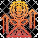 Bitcoin Growth Bitcoin Plant Bitcoin Icon