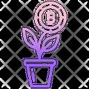 Bitcoin Growth Bitcoin Cryptocurrency Icon