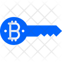Key Bitcoin Key Bitcoin Password Icon