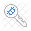 Bitcoin Key Lock Icon
