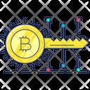 Access Key Bitcoin Key Digital Key Icon
