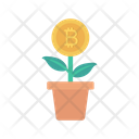 Growth Bitcoin Plant Icon