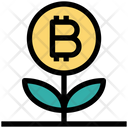 Bitcoin Plant Bitcoin Plant Icon