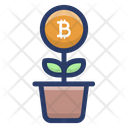 Bitcoin Plant Growth Icon