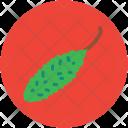 Bitter Gourd Melon Icon