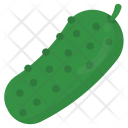 Bitter Gourd Vegetable Natural Icon
