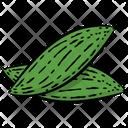 Bitter Gourd Vegetable Bitter Melon Icon