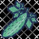 Bitter Gourd Icon