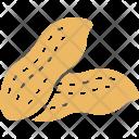 Bitter Melon Gourd Icon