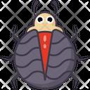 Black Beetle Icon