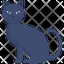 Black Cat Halloween Cat Bad Luck Icon