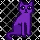 Black Cat Cat Veterinary Icon