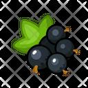 Black Currant Fruits Fruite Icon