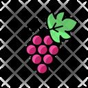 Grape Winery Wine Icon