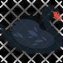 Black Duck Duck Bird Icon