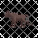 Jaguar Leopard Tiger Icon
