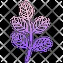 Black Locust Leaf Icon