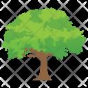 Black Locust Woods Icon