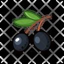 Black Olives Icon